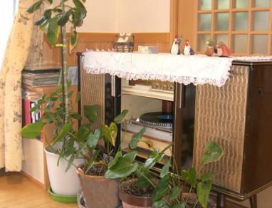 グループホームひまわり荘(兵庫県神崎郡市川町)イメージ