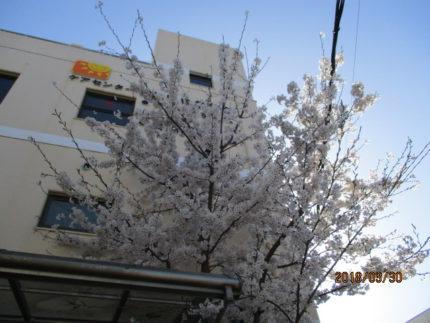 グループホームそれいゆ学園前(奈良県奈良市)イメージ