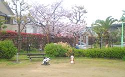 住宅型有料老人ホーム レガート堺東山(大阪府堺市中区)イメージ