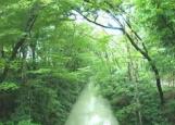 サービス付き高齢者向け住宅 あじさい北田園(東京都福生市)イメージ