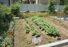 特定施設高齢者専用賃貸住宅あすなろ(東京都日野市)イメージ