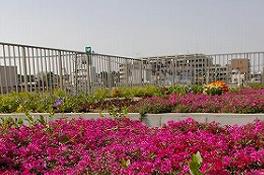 ロケアメディカルホーム千鳥町イメージ