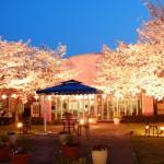 サービス付き高齢者向け住宅 ライオンハウス桜の園(佐賀県杵島郡白石町)イメージ