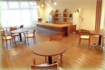 サービス付き高齢者向け住宅 特定施設 三橋ナーシングホーム(埼玉県さいたま市西区)イメージ
