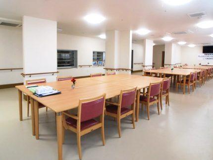 サービス付き高齢者向け住宅 ウェルライフヴィラ海老名こまち(神奈川県海老名市)イメージ